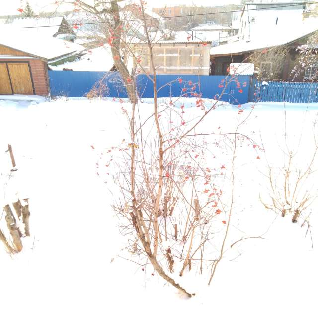 Шарташ после ночного снегопада