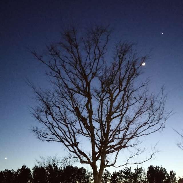 冬の若州の夜