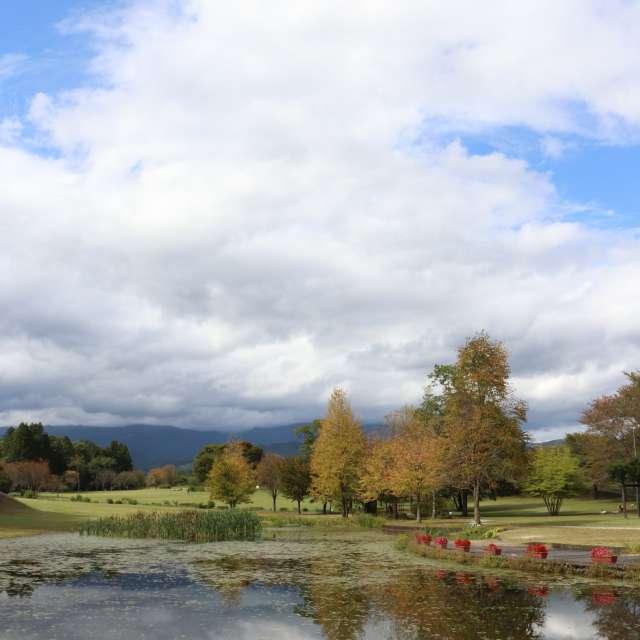秋の池のある公園