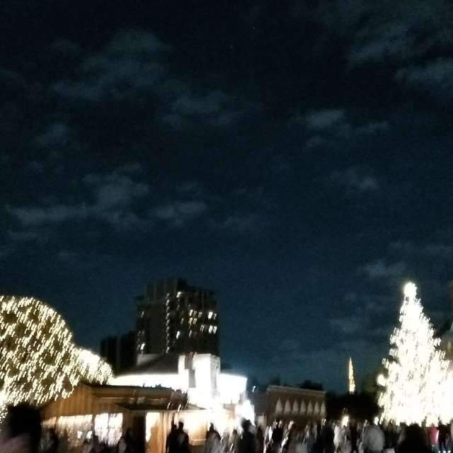 恵比寿ガーデンプレイスで撮ったはずです。ピンぼけ。