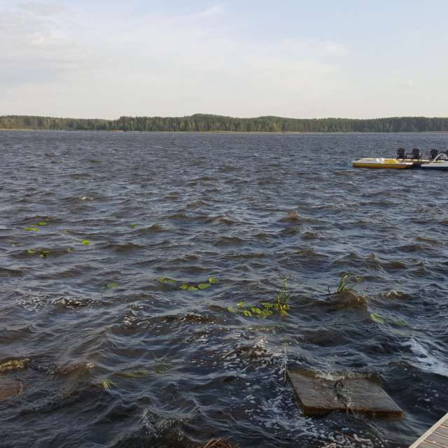 Озеро Лиласте Латвия