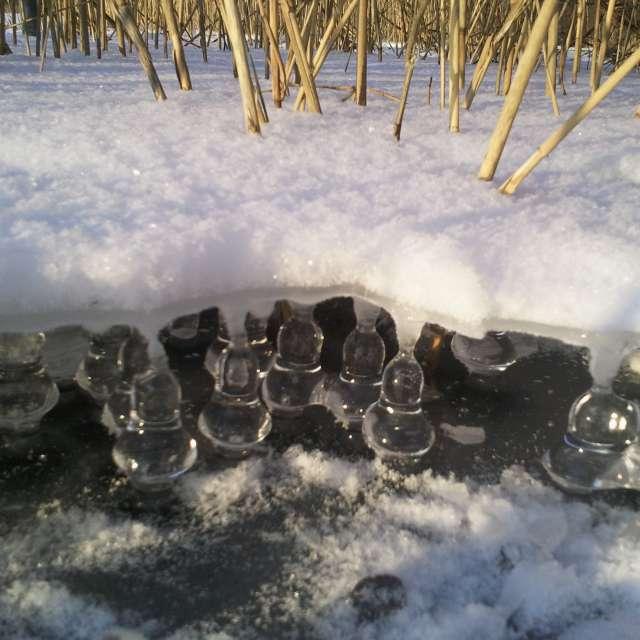 Schnell getraut und gefroren