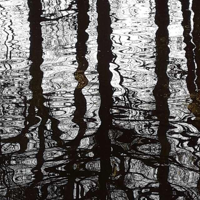 Wasser Reflektion Aue Natur