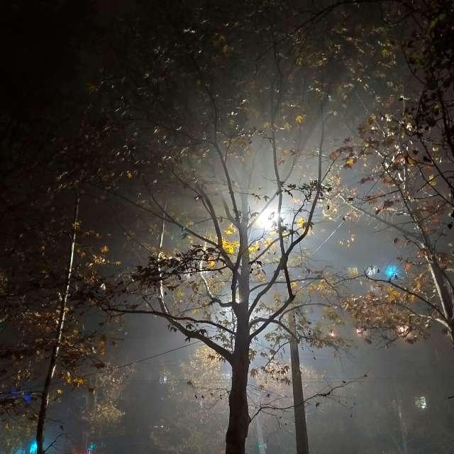 Ночь. Улица. Фонарь. Туман