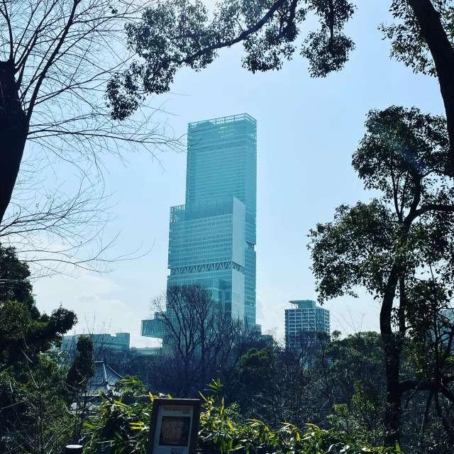 慶沢園からのハルカス