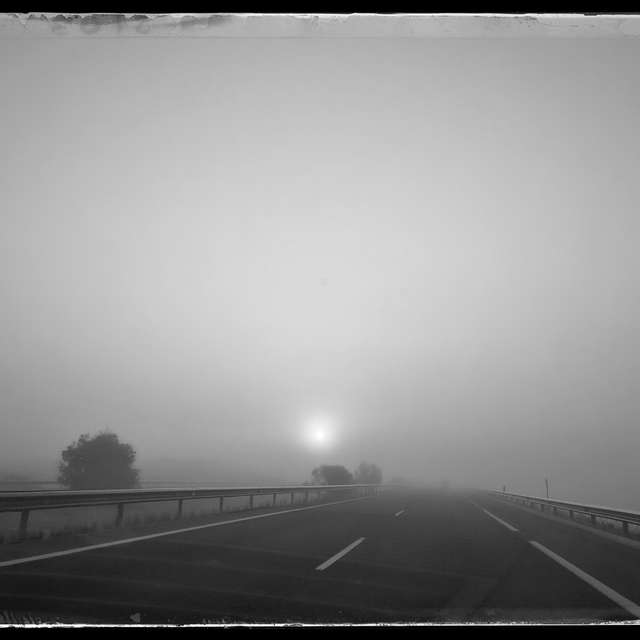 Niebla en la carretera