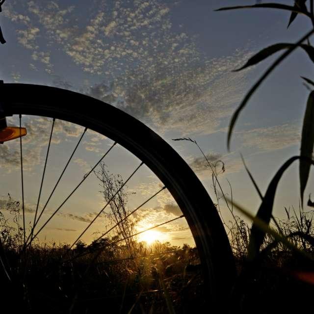 Sunset through the bike wheel