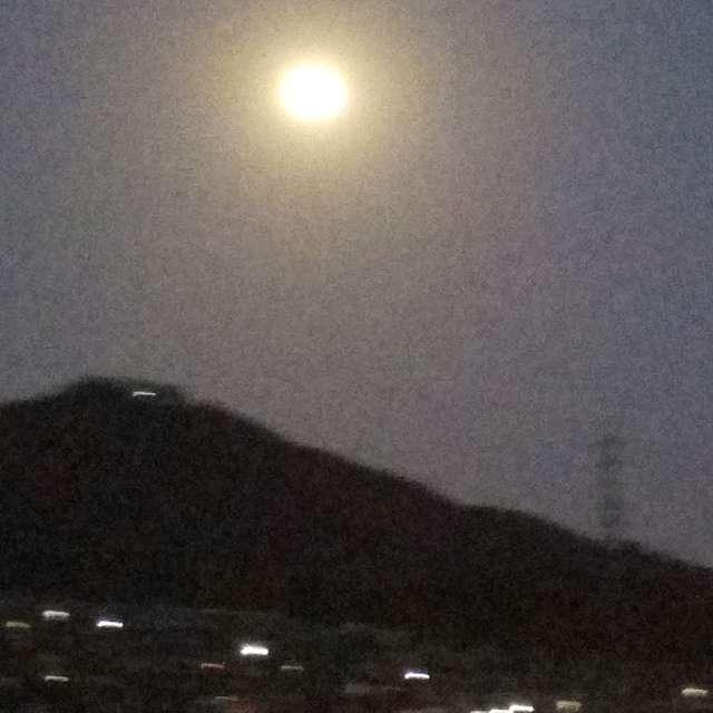 お月さまが出ていた!玄関先から撮影したーありふれた写真かな?