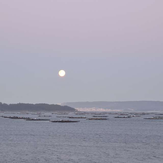 Luna Amanecer  ría de Arousa