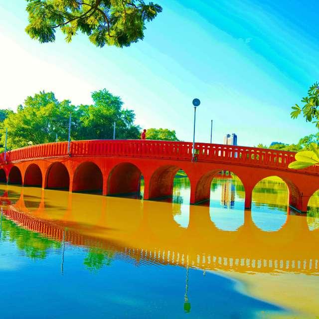 pink bridge  public park.