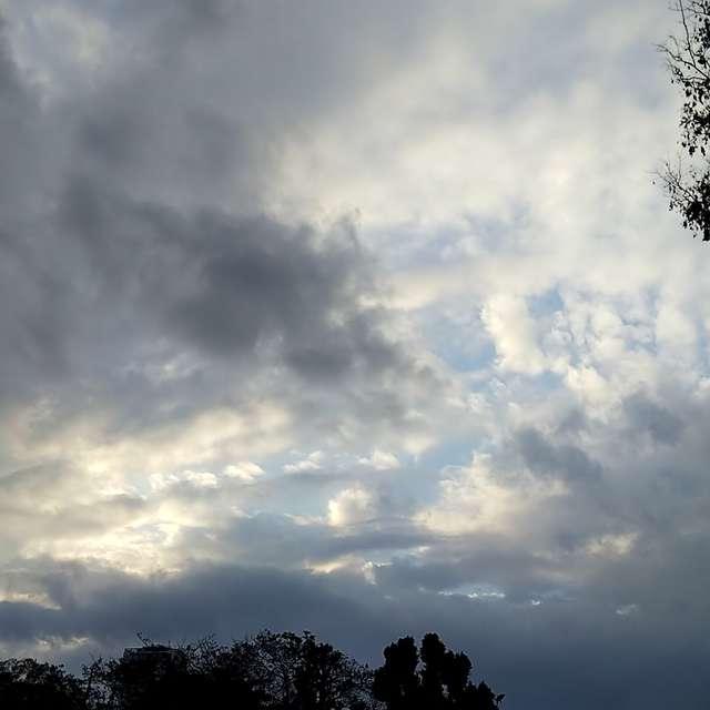 鰯雲をまだみていません…………。