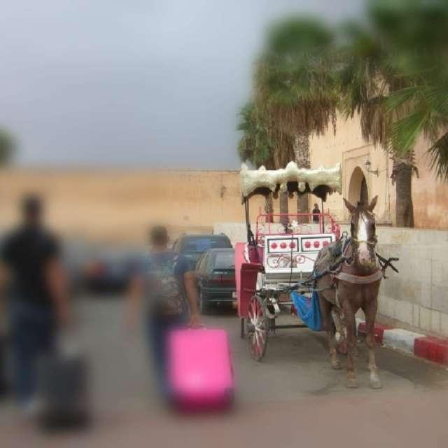 モロッコ馬車