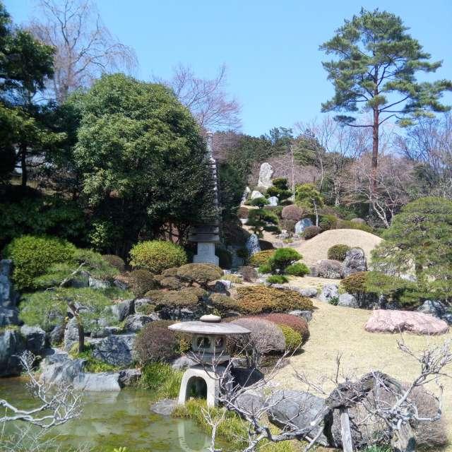 日本庭園のライオン