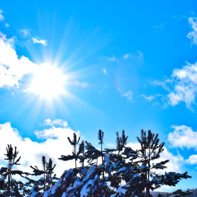 Sunshine winter
