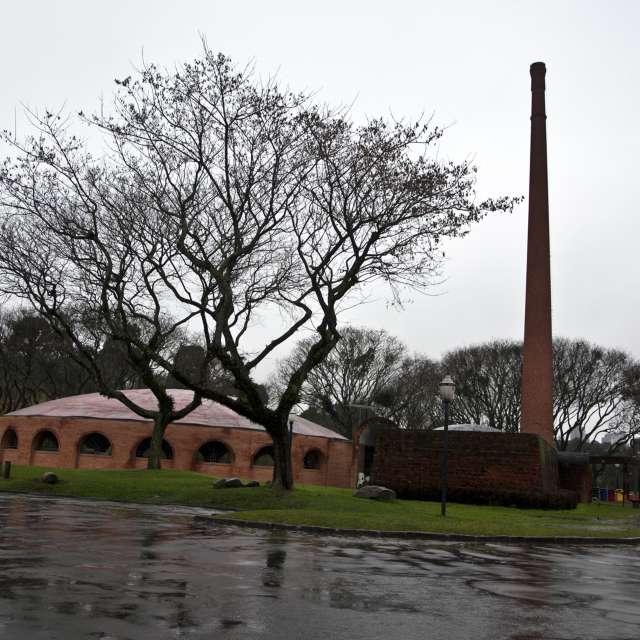 Barigui Rain