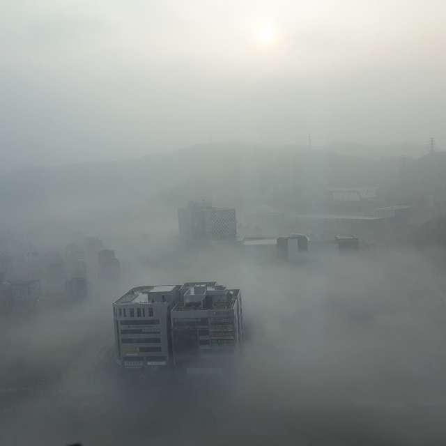 Morning Fog City