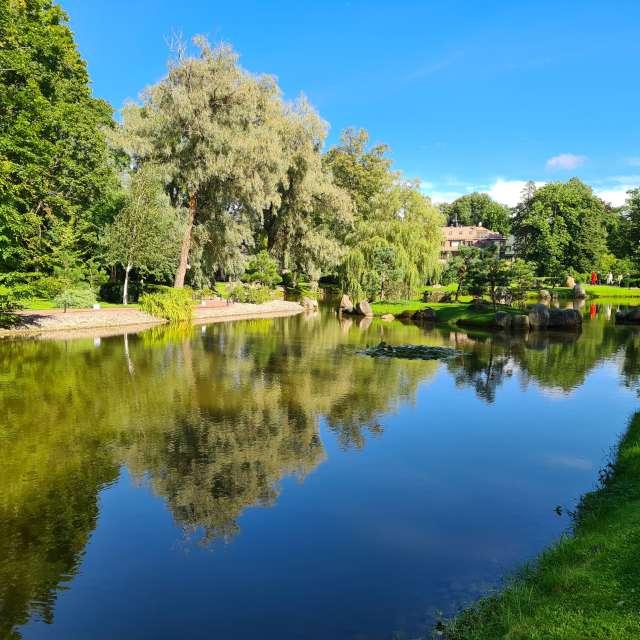 Pond in Kadriorg Park