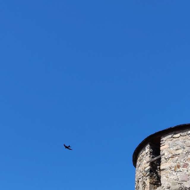 Castillo de los Templarios.