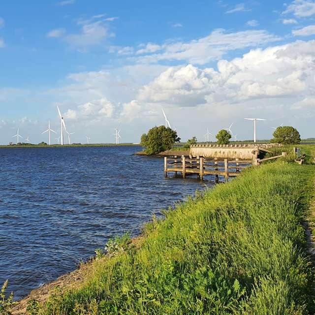 Near the Palendijk