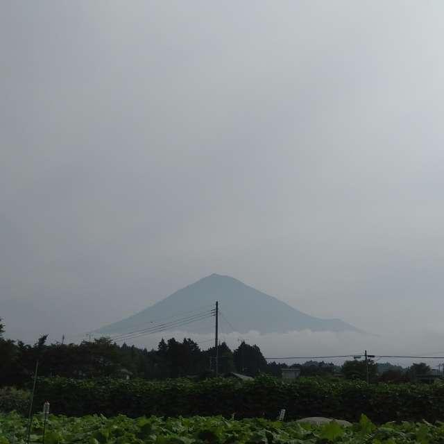 20190718 今日の富士山