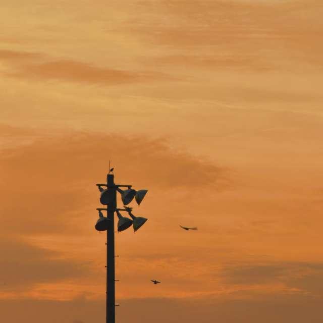 Orange Sky Roost