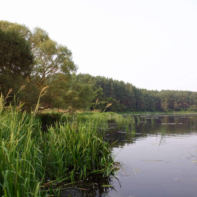 вода+пейзаж