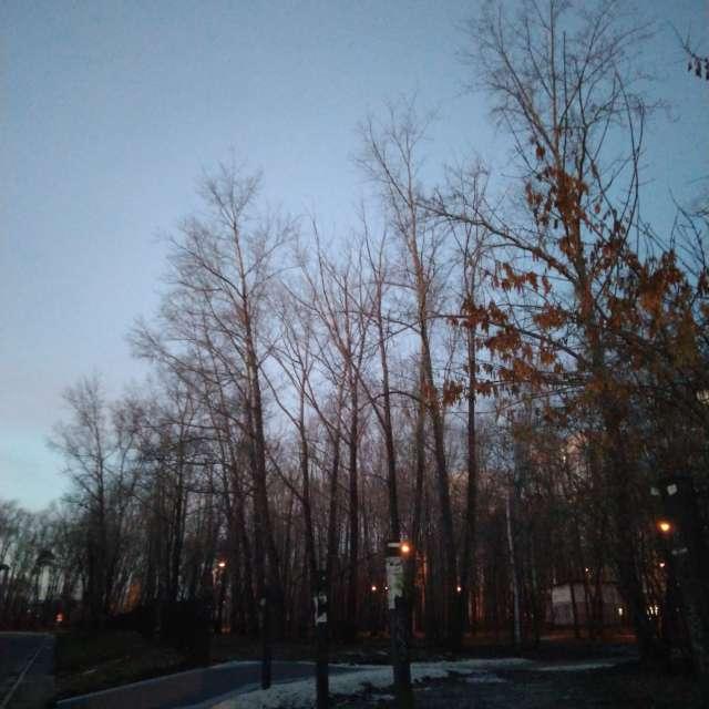 Парк Турбомоторного завода