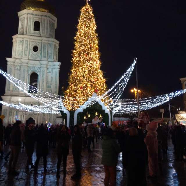 Киев,  Новый год, Софиевка