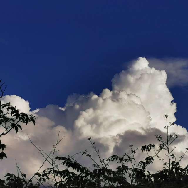 雲がキレイでした