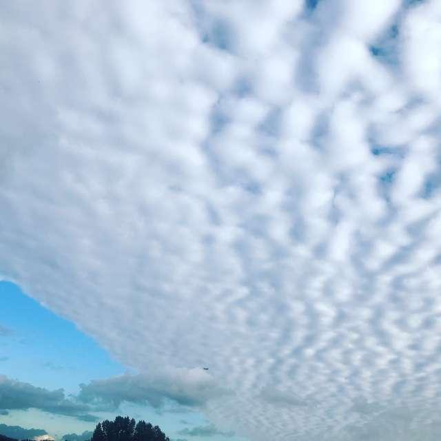 空を流れる雲