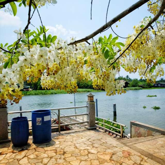 summer thailand
