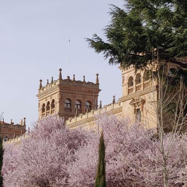 Floración primaveral