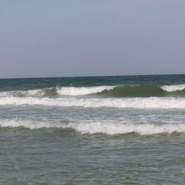 белые волны черного моря