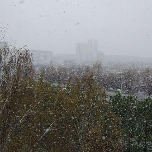 Такого снегопада...