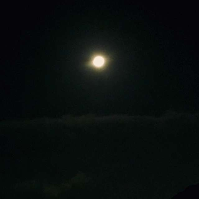 中秋の名月..*十六夜*..