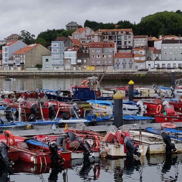 Barcos de marisqueo en Carril.