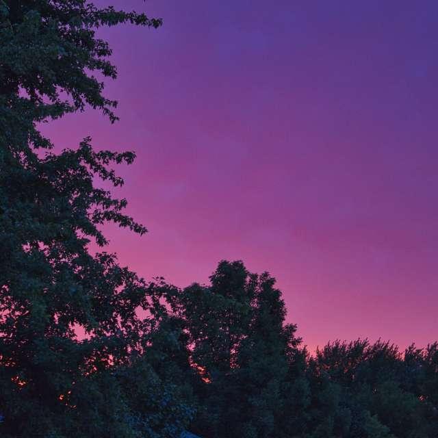 Pink and purple sky