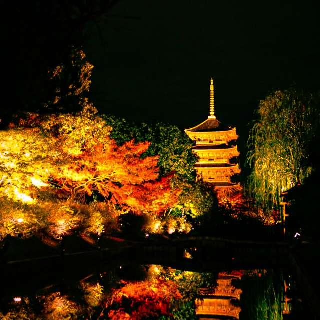 荘厳な東寺の景色