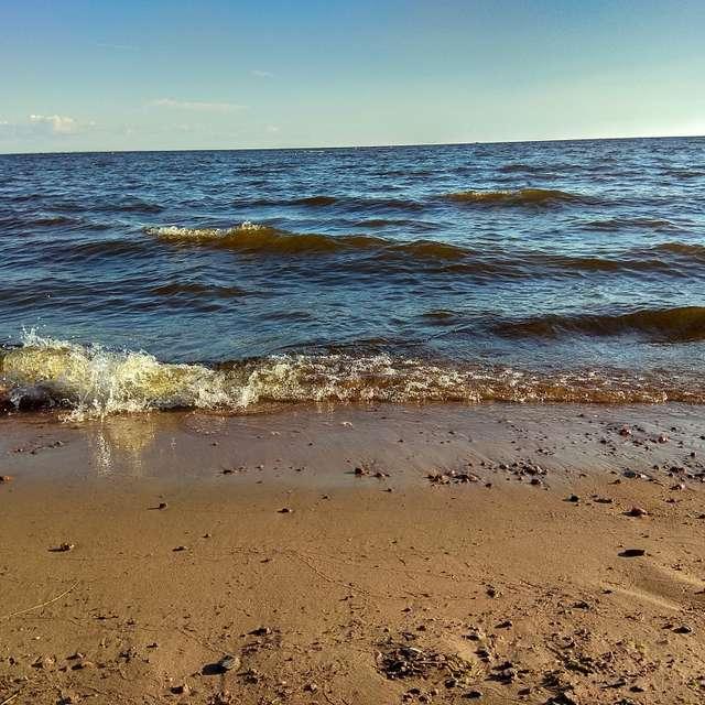 Волны Финского залива