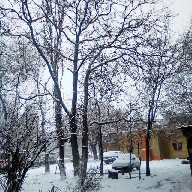 La neige-ok
