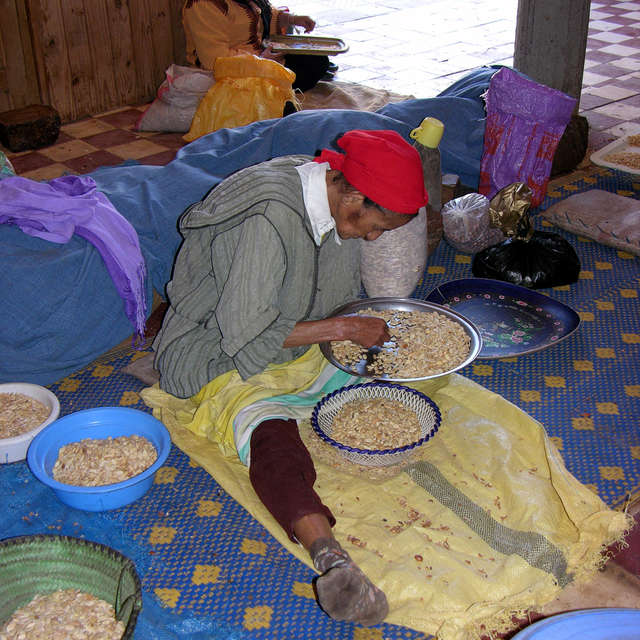 Woman working at argan nuts.