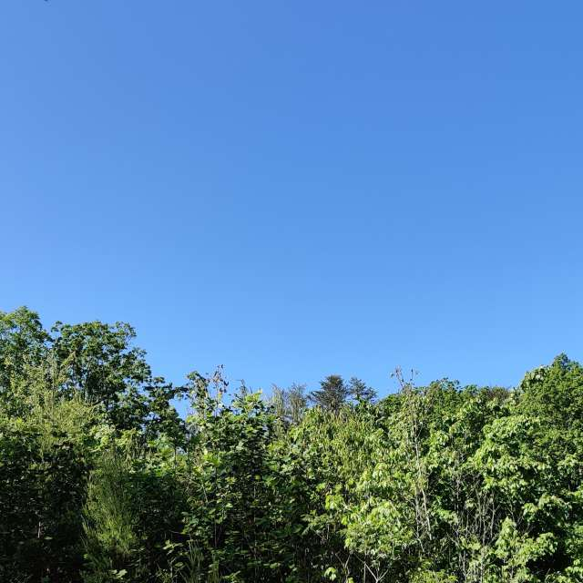 Clear skies in East Tennessee