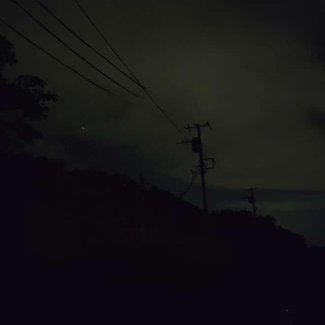 蛍が飛ぶ夜…小さな輝き伝われ…!