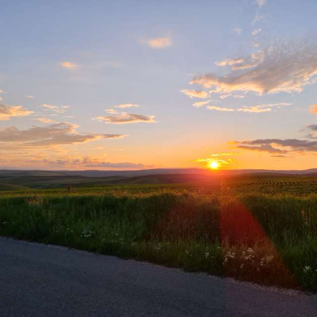 Tamed light sunset