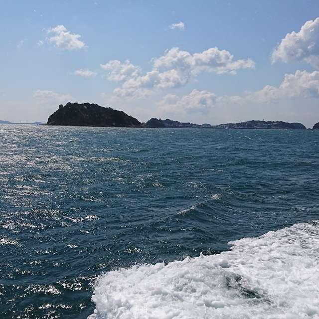 whale?! island (*≧∀≦*)