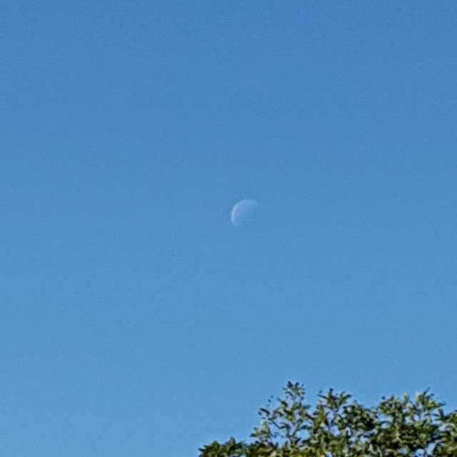 Half moon on day time