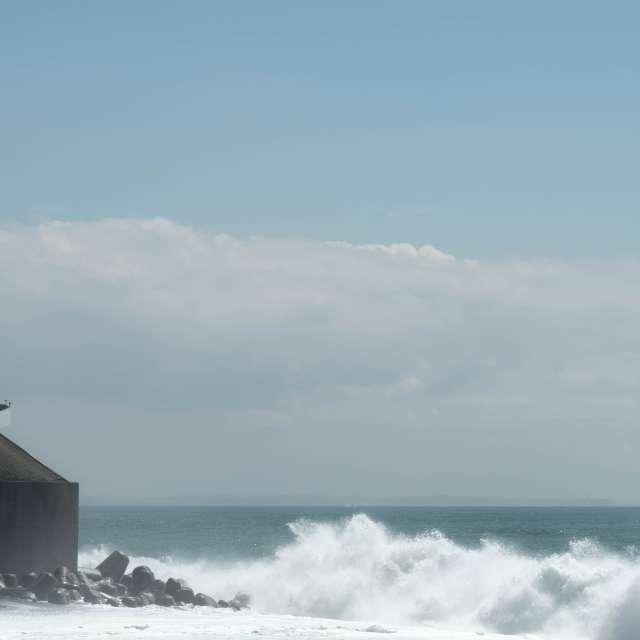 西湘バイパスに打ち寄せる波