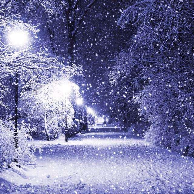 真正 冷的 雪