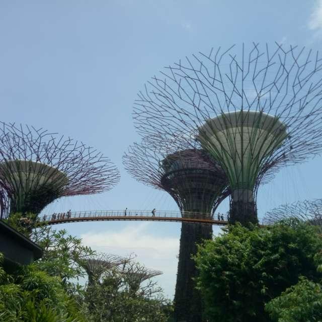 Marina Bay Sands,Sky Garden