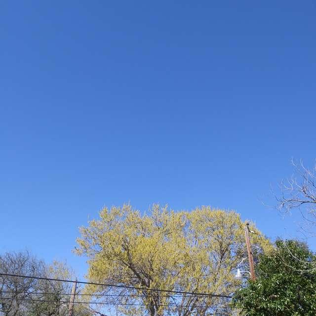 Infinity Blue Skies